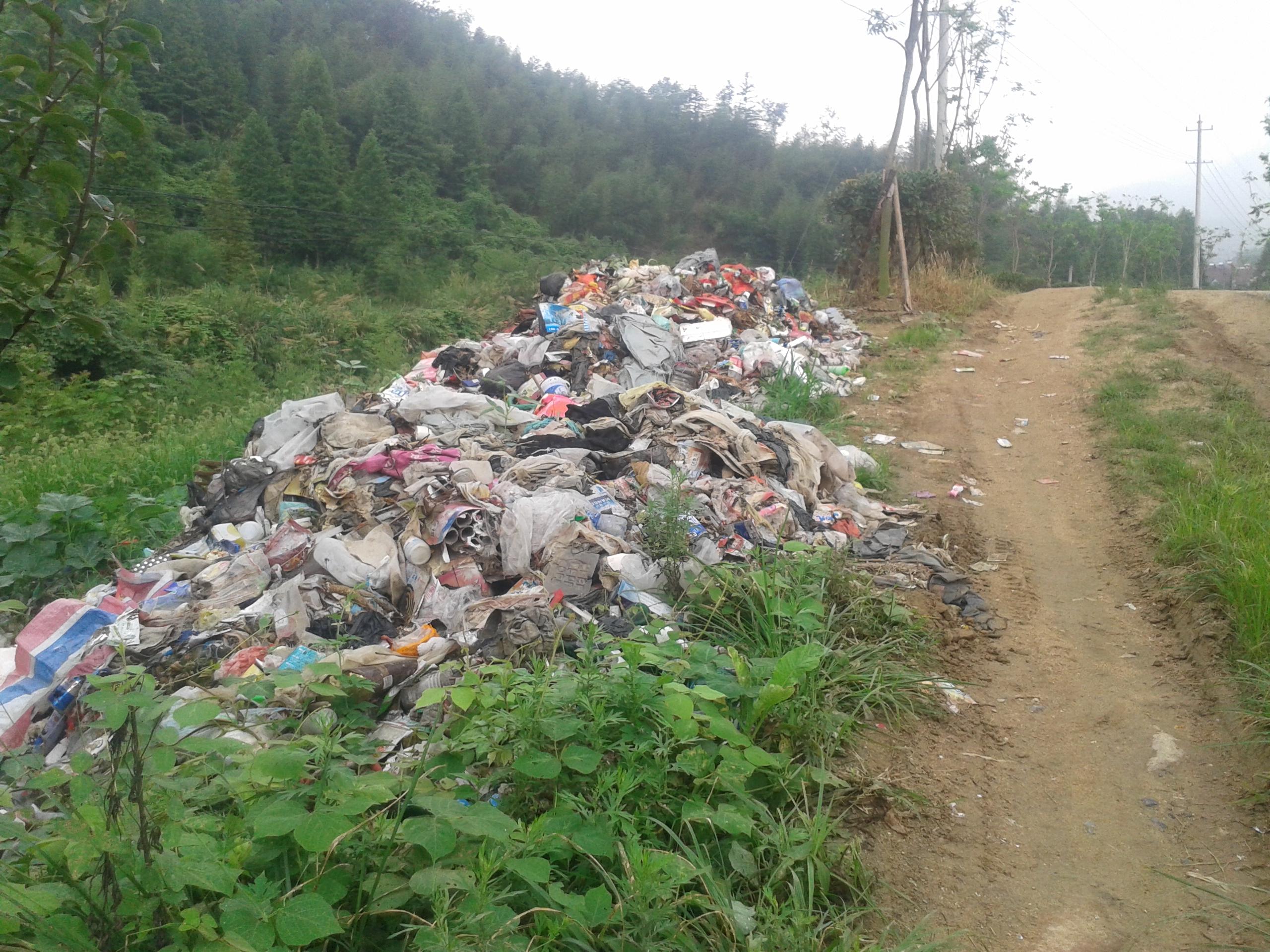 这是在卢村乡九龙村往冯村去的方向拍摄的(九龙新村部旁边),这些